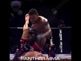 🔝Самый конкурентный дивизион в UFC - Легкий дивизион!🔥▼Кто по вашему мнению лучший в этой весовой категори