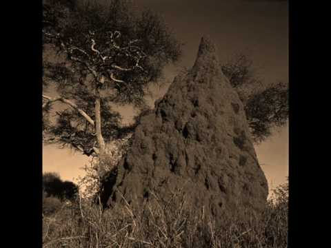 Killing Joke - Inside The Termite Mound