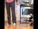 Собакен штурмовик 6 sec