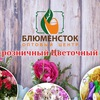 Декор и флористика | Вологда