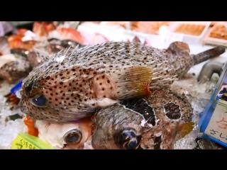 日本路邊小吃 - 豪豬魚 生魚片 海鮮湯。