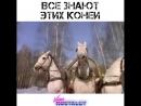 Из к\ф Чародеи 1982 Лариса Долина - Три белых коня