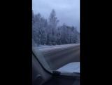 Вот такая красота вдоль дороги)))