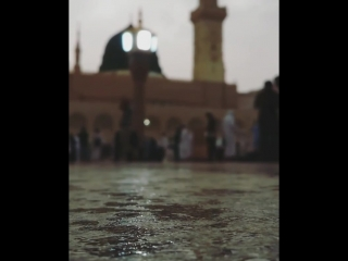يافوز من صلى عليه وسلما ☁ ﷺ 🌿