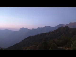 Рассвет на плантациях Муннара