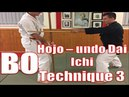 Okinawan Kobudo - Bo Hojo-undo Dai Ichi - Chudan Yoko Uchi Matayoshi Kobudo