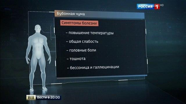 Вести в 20:00 • Как не допустить вспышку бубонной чумы