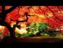 4гл Искусство медитации Методы самотрансформации Сан Лайт Nikosho