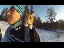 Кот Левис на лыжной прогулке