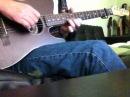 Fender Telecoustic - Irish Guitar Instrumental 2