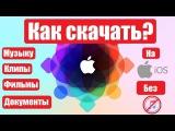 Как скачать музыку/клипы/фильмы и документы на iPhone/iPad без ПК