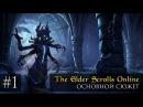 Прохождение Elder Scrolls Online. Основной сюжет: Часть 1. Побег из Хладной Гавани