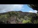 Ein Garten auf Gran Canaria