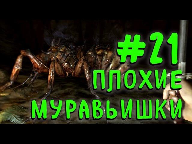 21 FALLOUT: NEW VEGAS - Плохие муравьишки [ Fate of Wanderer ПРОХОЖДЕНИЕ ]