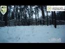 Зубры в национальном парке Угра
