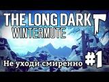The Long Dark Wintermute #1 - Не уходи смиренно