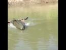 неудачные моменты рыбалки.