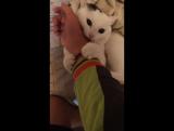 Кот-урод