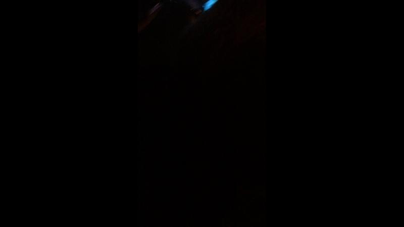 Злата Канаева — Live