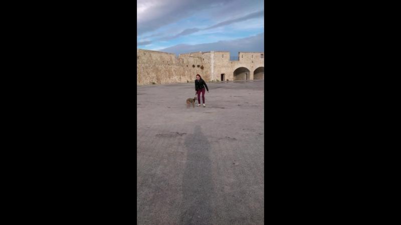 Крепость в Antibes