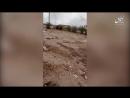 Видеозапись нападения боевиков Исламского Государства на колонну иракских ополченцев из «Хашд Шааби» на трассе в районе города К