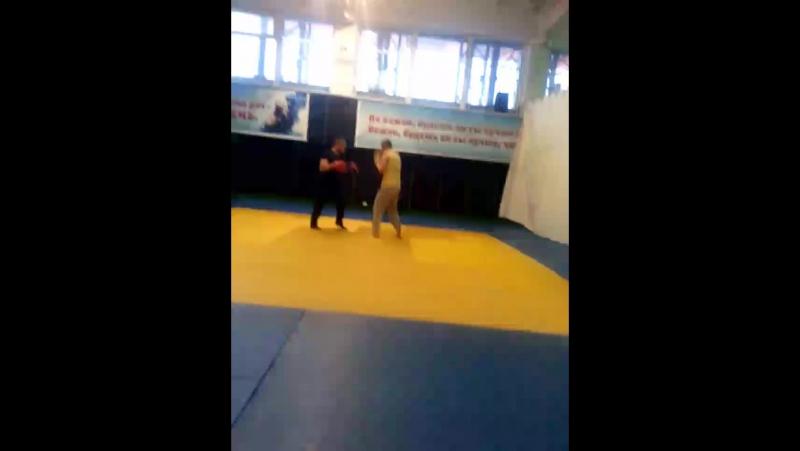 Виталика боксерка