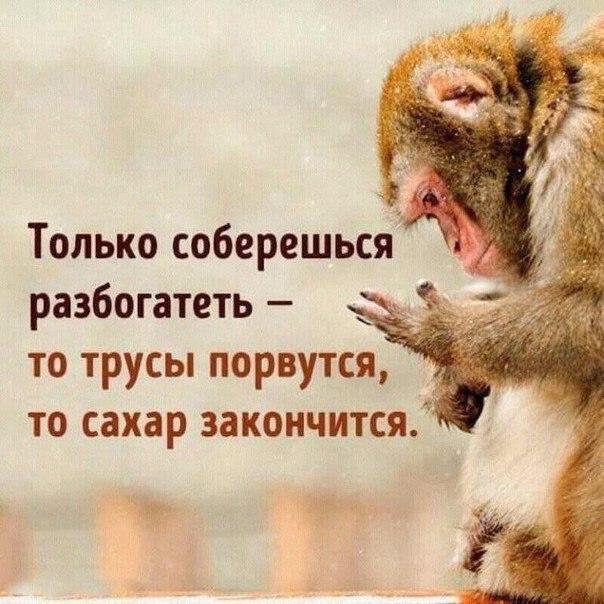Фото №456271297 со страницы Тани Рыженковой