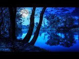 Relaxing Nature Sounds 247 For Sleep, Relaxation, Meditation And Stress Relief - Without Music