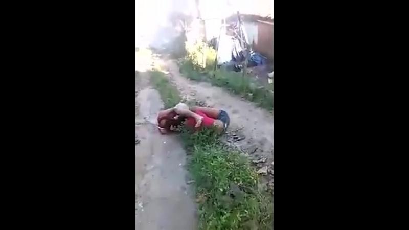 Olha essa briga - YouTube