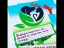 Экологическая Азбука I Карточки I Лэпбук по экологии