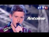 Antoine -