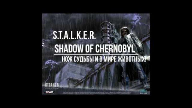 Прохождение S.T.A.L.K.E.R. Shadow of Chernobyl часть 5 (Нож Судьбы и в Мире Животных)