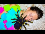 Bad Baby Are You Sleeping Learn Colors Tape Nursery Rhyme for kids Song Bad Kid Giant Spider Prank