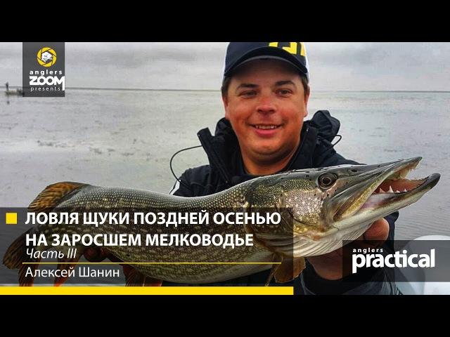 Ловля щуки воблерами поздней осенью на заросшем мелководье. Алексей Шанин. Часть 3