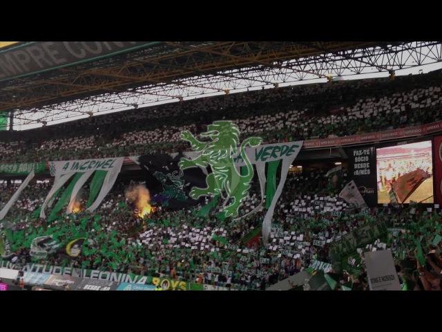 CHANTS SPORTING CLUBE DE PORTUGAL PARTE 1 JUVE LEO TORCIDA DUXXI BRIGADA LETRA LYCRICS