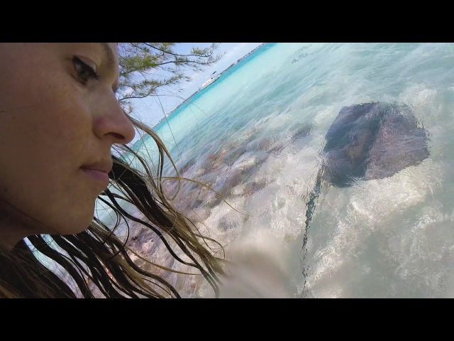 Swimming with Stingrays and best conch salad in the Bahamas SailOceans