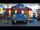 꼬마버스 타요 키즈 카페 어린이 놀이터 테마파크 Tayo Bus Kids Playground Amusement Детская игровая комната Тайо