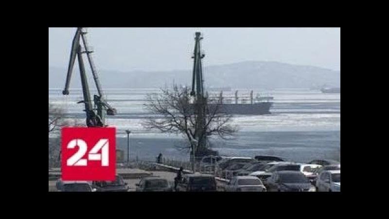 Резиденты свободный порт Владивосток создадут в Приморье две тысячи рабочих мест Россия 24