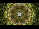 ILLUMINATI -- JJ Brine. Official Music Video.