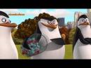 Пингвины из Мадагаскара (Шарики за ролики)