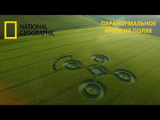 Паранормальное Круги на полях National Geographic