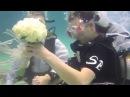 Подводная свадьба остров Ко Тао Таиланд Underwater wedding Koh Tao Thailand
