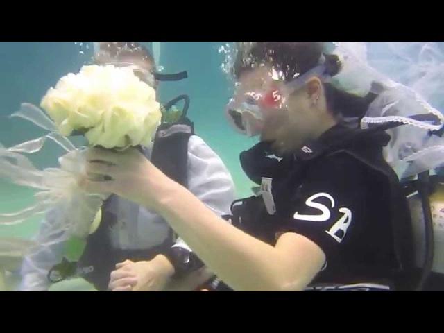 Подводная свадьба, остров Ко Тао, Таиланд (Underwater wedding, Koh Tao, Thailand)