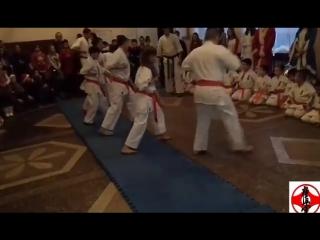 "Показове виступление KYOKUSHIN DOJO KOTELEVO ""FIGHTER"""