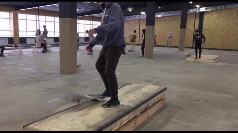 Doberman skate contest(2)