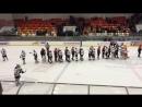 Хоккейная игра