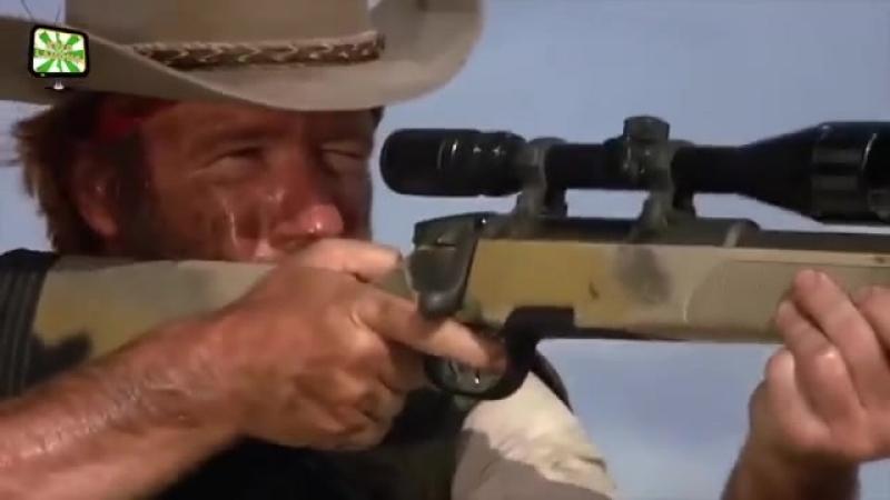 Chuck Norris - Kills them all