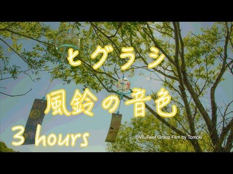Higurashi cicada Wind chimeひぐらしの鳴き声と風鈴