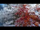 Снежный ноктюрн. Ричард Клайдерман _ Snow Nocturne. Richard Clayderman