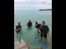 Дайвинг Карибское море КУБА 2К18